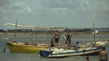 Conheça o trabalho da colônia urbana de pescadores - Conheça o trabalho da colônia urbana de pescadores