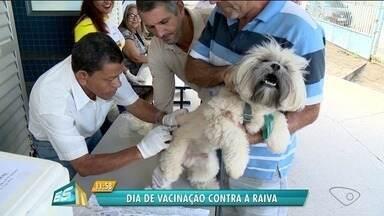 Linhares tem campanha de vacinação contra raiva para animais domésticos - Linhares tem campanha de vacinação contra raiva para animais domésticos.
