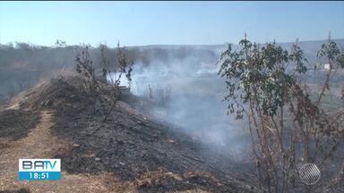 Área equivalente a seis campos de futebol é consumida pelo fogo em Barreiras - Número de queimadas está aumentando no oeste da Bahia.
