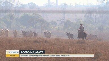 Incêndio destrói fazenda experimental em Sertãozinho, SP - Bombeiros, brigadistas, funcionários de usina e concessionária atuaram no combate ao fogo.
