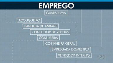 Veja as vagas de empregos na Agência do Trabalhador de Guarapuava - Para saber mais sobre essas e outras vagas de trabalho, procure a Agência do Trabalhador de Guarapuava, no Centro da cidade.