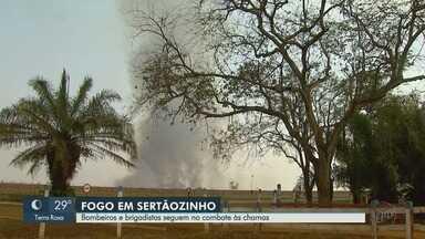 Incêndio ainda consome Centro de Pesquisa de Bovinos de Corte em Sertãozinho, SP - Parte da área de mais de dois mil hectares foi destruída pelas chamas.