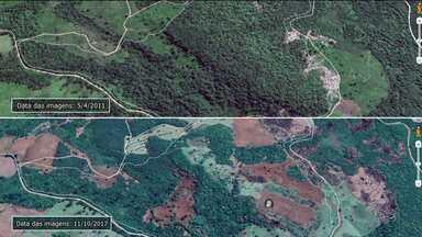 Operação confirma desmatamento de 618 hectares no Paraná - A operação Mata Atlântica foi realizada em outros estados também.