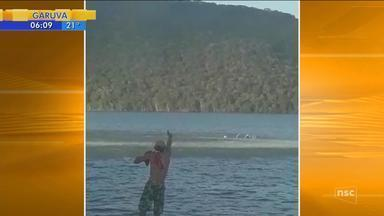 Bombeiros retomam buscas por homem desaparecido na Baía da Babitonga, em Joinville - Bombeiros retomam buscas por homem desaparecido na Baía da Babitonga, em Joinville
