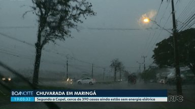 29 árvores caíram durante a chuvarada em Maringá e 390 casas continuam sem energia - Segundo o Instituto Nacional de Meteorologia (Inmet), os ventos chegaram a 60 km/h.