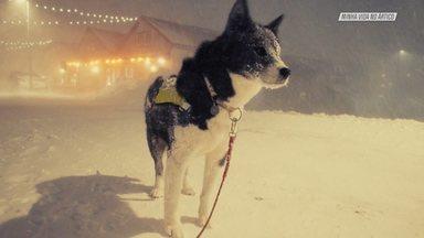 Aventura De Snowkite