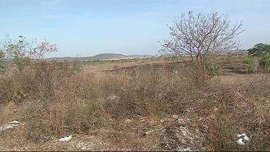 Queimar terrenos pode ser considerada crime ambiental e colocar em risco a vida de pessoas - Especialista fala sobre os perigos.