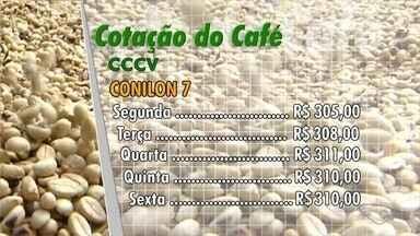 Confira a cotação de café no Espírito Santo - Veja como o mercado do café se comportou durante a semana.