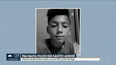Pai mata filho de 13 anos e tenta matar o outro de 3 em Santo André - A mãe das crianças só foi descobrir o crime horas depois, quando voltou do trabalho.O criminoso fugiu.