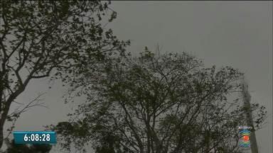 Veja a Previsão do Tempo para esta quarta-feira - Confira a previsão do tempo em todo o estado.