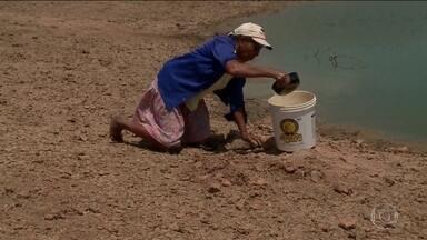 Ceará e Piauí registram prejuízos causados pela seca - Com 41 municípios em situação de emergência, no Piauí, 19 ainda não estão recebendo carros-pipas do governo federal, em algumas comunidades, o carro não passa há seis meses.