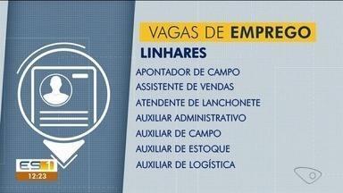 Confira as vagas de emprego no Sine de Linhares - Vejas as oportunidades.