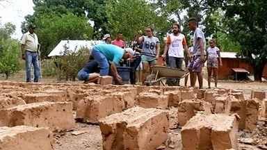 Projeto ensina técnicas sustentáveis de plantio para jovens, em Niquelêndia - Jovens aprendem técnicas de adubação, corte, plantio e manutenção das folhagens.