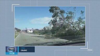 SC registra destelhamentos e quedas de árvores após fortes rajadas de vento - SC registra destelhamentos e quedas de árvores após fortes rajadas de vento