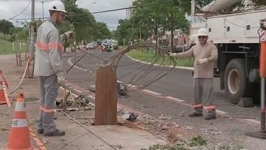 Polícia tenta identificar carro que derrubou poste em avenida de Bauru - Avenida Getúlio Vargas precisou ser interditada porque fiação da rede elétrica ficou atravessada na pista. Polícia Militar foi acionada, mas não encontrou no local o veículo que causou estragos.