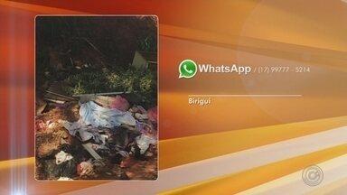 Envie sugestões de reportagens pelo whatsapp da TV TEM de Rio Preto - Envie sugestões de reportagens pelo WhatsApp da TV TEM de São José do Rio Preto (SP) no número (17) 99777-5214.