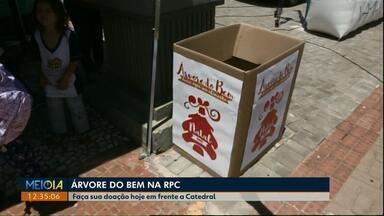 Caixa da 'Árvore do Bem' está em frente à Catedral de Cascavel para receber doações - Alimentos arrecadados serão doados para instituições beneficentes.