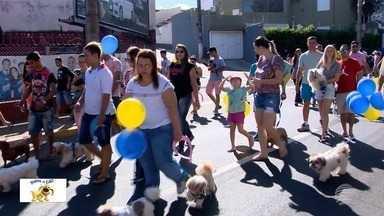 Mania de Cão atrai milhares de pessoas no Parque do Povo - 11ª edição do evento, organizado pela TV Fronteira, foi realizada neste domingo (11), em Presidente Prudente.