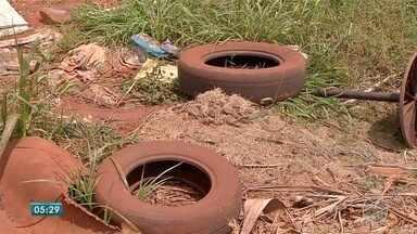 Na fronteira com Paraguai aumenta o índice de infestação do mosquito Aedes Aegypti - Índice tem preocupado as autoridades de saúde.