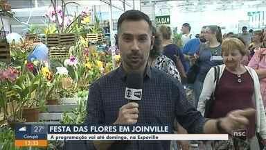 Festa das Flores tem exposição de mais de 25 mil espécies ornamentais e 5 mil orquídeas - Festa das Flores tem exposição de mais de 25 mil espécies ornamentais e 5 mil orquídeas
