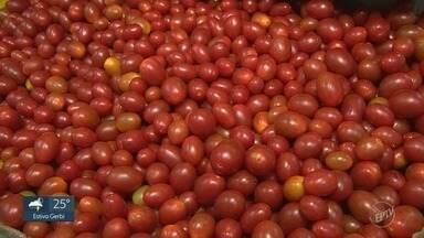 Preço do tomate dispara em comércios da região de Campinas - Alta no valor faz consumidores buscarem alternativas.