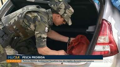 Polícia Militar Ambiental fiscaliza rios na região de Ponta Grossa - Fiscalizações seguem durante o período da Piracema.