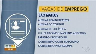 Confira as oportunidades de emprego no Sine de São Mateus - Diversas vagas estão abertas.
