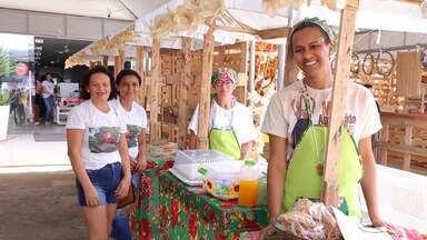 Saiba como foi a 'Festa do Milho', realizada por agricultores de Paripiranga - Evento aconteceu no último fim de semana e reuniu agronegócio e manifestações culturais.