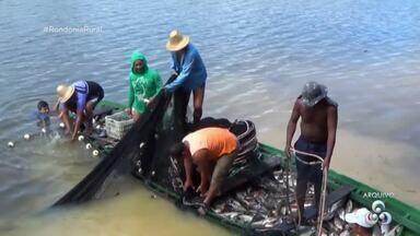 300 mil pescadores têm direito a receber o Seguro Defeso na Região Norte - Em Rondônia são quase 5 mil benefícios, segundo o INSS.