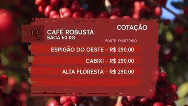 Aqui você encontra a cotação agrícola desta semana - Confira os preços do café, boi gordo, soja e milho.