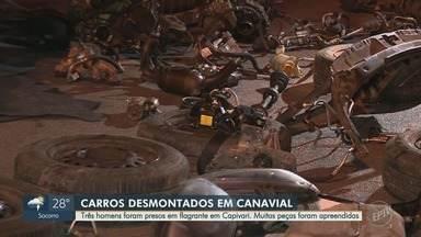 Polícia prende três homens em Capivari que haviam desmanchado dois carros em canavial - Os policiais encontraram o desmanche na zona rural por meio de um rastreador que estavam em um dos veículos.