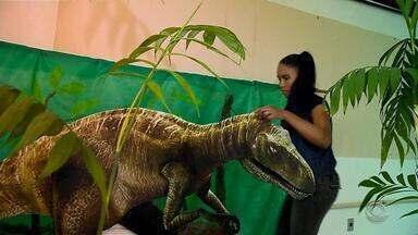 Centro da UFSM reúne fósseis e réplicas de dinossauros que habitaram a Região Central - Assista ao vídeo.