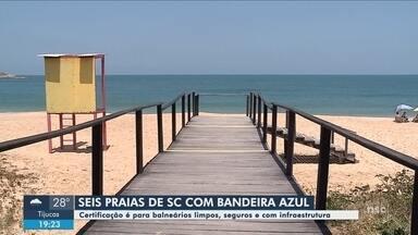 Seis praias de SC recebem bandeira azul em certificação de qualidade - Seis praias de SC recebem bandeira azul em certificação de qualidade