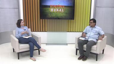 Bate-papo Rural: Professor Ricardo Gilson fala sobre dinâmica agrária e territorial - Tema em território Amazônico virou livro.