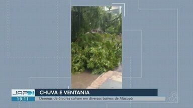 Temporal com ventania derruba árvores em Macapá e causa prejuízos - Fenômeno ocorreu na tarde desta sexta-feira (14).