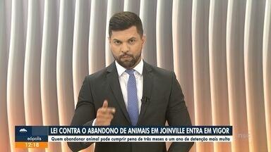 Lei sobre abandono de animais entra em vigor em Joinville - Lei sobre abandono de animais entra em vigor em Joinville.