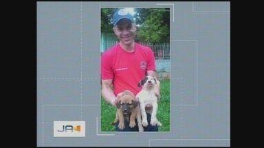 Bombeiros de Chapecó resgatam 3 filhotes de cachorro - Bombeiros de Chapecó resgatam 3 filhotes de cachorro