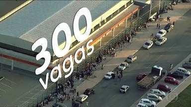 15 mil procuram emprego no DF - Fila quilométrica é para conseguir vaga em supermercado