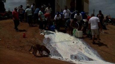 Sem pagamento do Estado, produtores jogam fora leite em Alagoas - O Programa do Leite beneficia mais de 80 mil famílias de baixa renda.