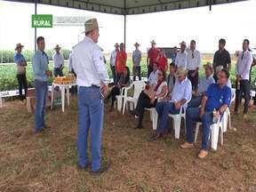 Dia da campo apresenta tecnologias para a produtividade de soja e milho em Balsas - As duas tecnologias são: O plantio de uma terceira safra para proteger o solo e um adubo enriquecido com uma alga marinha encontrada no litoral do Maranhão.