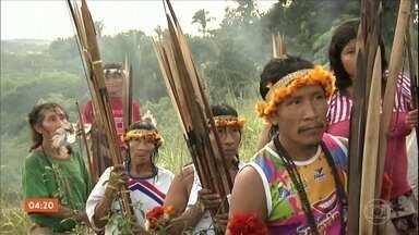 Lideranças indígenas do MA denunciam invasão de terras demarcadas - Um dos território ameaçados pelas ação de grileiros é o território da tribo Awá-Guajá