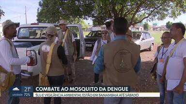 SLU e Vigilância Ambiental fazem mutirão de prevenção à dengue em Samambaia - Até sábado (19), as equipes vão recolher entulho e objetos velhos das casas dos moradores. O objetivo é evitar o descarte irregular de lixo e eliminar os focos do mosquito. O DF registrou 14 casos suspeitos de dengue na primeira semana de janeiro.