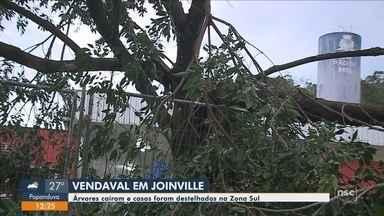 Vendaval em Joinville derruba árvores e destelha casas na Zona Sul - Vendaval em Joinville derruba árvores e destelha casas na Zona Sul