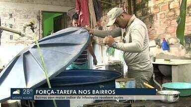 Bairros com infestação de Aedes aegypti recebem ações preventivas em Santarém - Estudo apontou os principais pontos com infestação em Santarém.