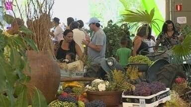 Milhares pessoas participam da Festa da Uva em Jundiaí - Além da fruta e do vinho, a Festa da Uva de Jundiaí (SP) quer contar um pouco da história da uva niágara rosada, que foi criada na cidade.