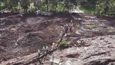 Boletim: encontrados 2 primeiros corpos de ônibus soterrado pela lama em Brumadinho (MG) - Mais três corpos foram identificados. Os nomes deles devem ser colocados na próxima lista que deve ser divulgada no final da tarde desta segunda-feira.