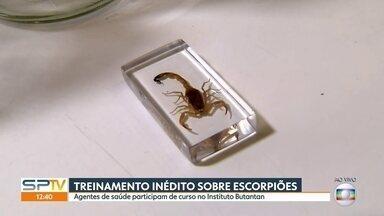 Agentes de saúde recebem curso sobre escorpiões no Instituto Butantan - Inseto virou problema em todo o estado. Número de casos envolvendo picadas de escorpião aumentou 24% em 2018.