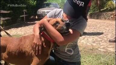 População ajuda a resgatar animais atolados - Mariana Ferrão conversou com a Ana.