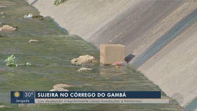 Lixo despejado irregularmente causa inundações e transtornos para população - Lixo despejado irregularmente causa inundações e transtornos para população.