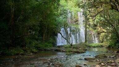 #PartiuRS: conheça o 'Caminho das Pedras', em Itapuca, no Vale do Taquari - Um lugar para descansar e apreciar a natureza com o som dos pássaros e da água ao fundo. O #PartiuRS te leva para conhecer Itapuca, no Vale do Taquari. A cidade fica a pouco mais de 3h de viagem de Porto Alegre e tem oito cachoeiras e cascatas abertas ao público. As paisagens são incríveis e vale aquele passeio com a família para passar o dia. Para visitar as cascatas é preciso agendar.